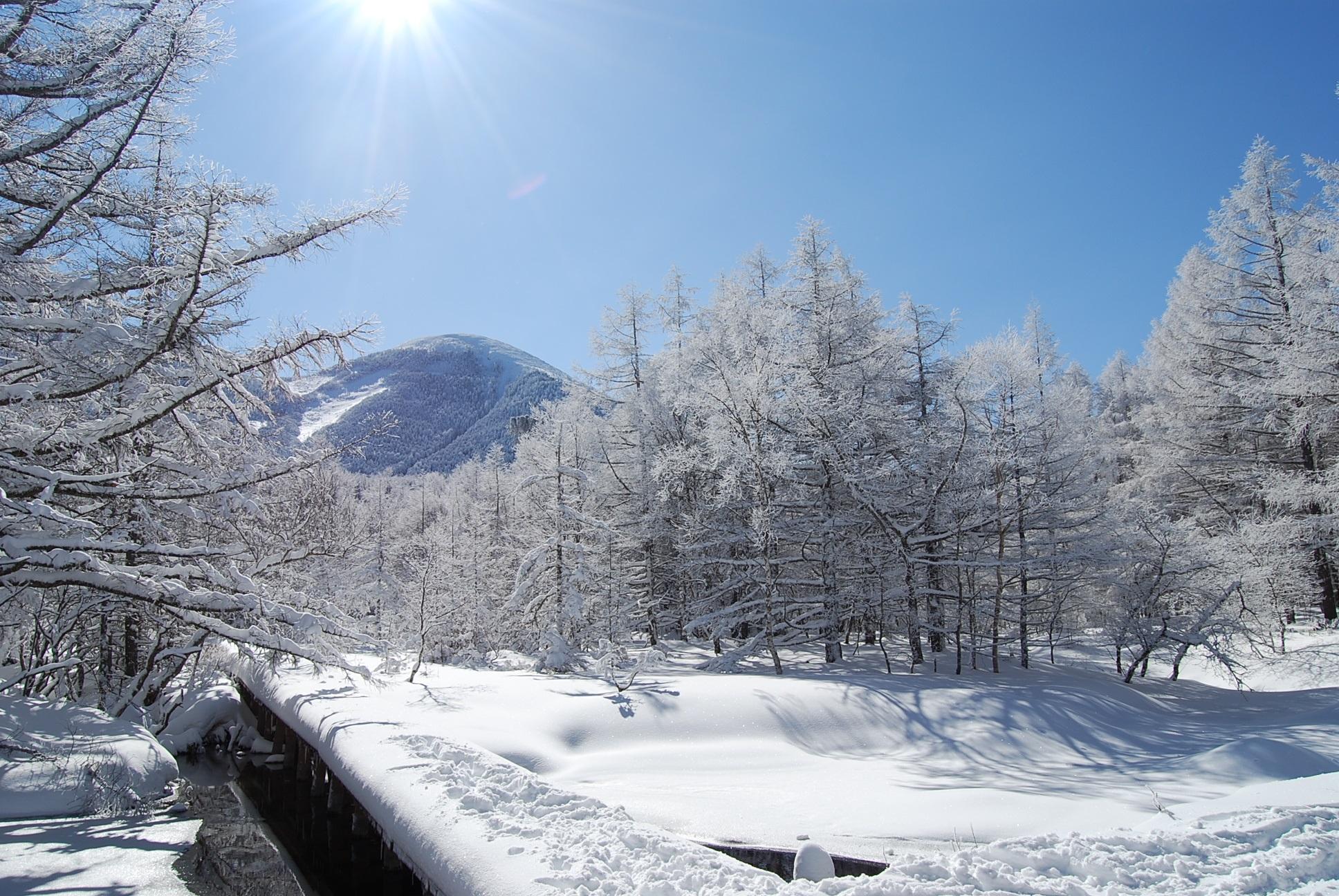 Shirakaba Kogen Kokusai Ski Resort