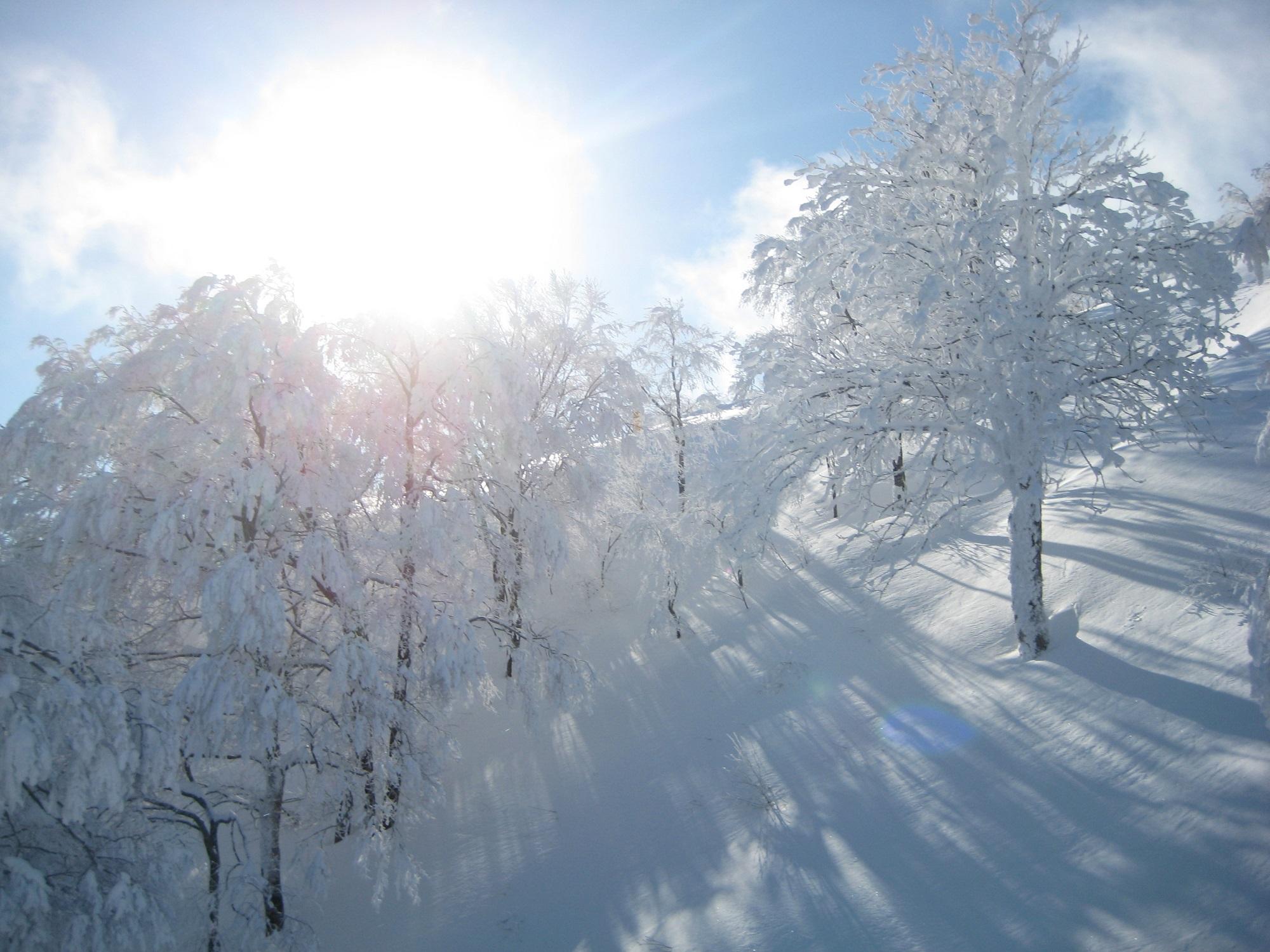 Hoshino Resort Nekoma Snow Park & Resort
