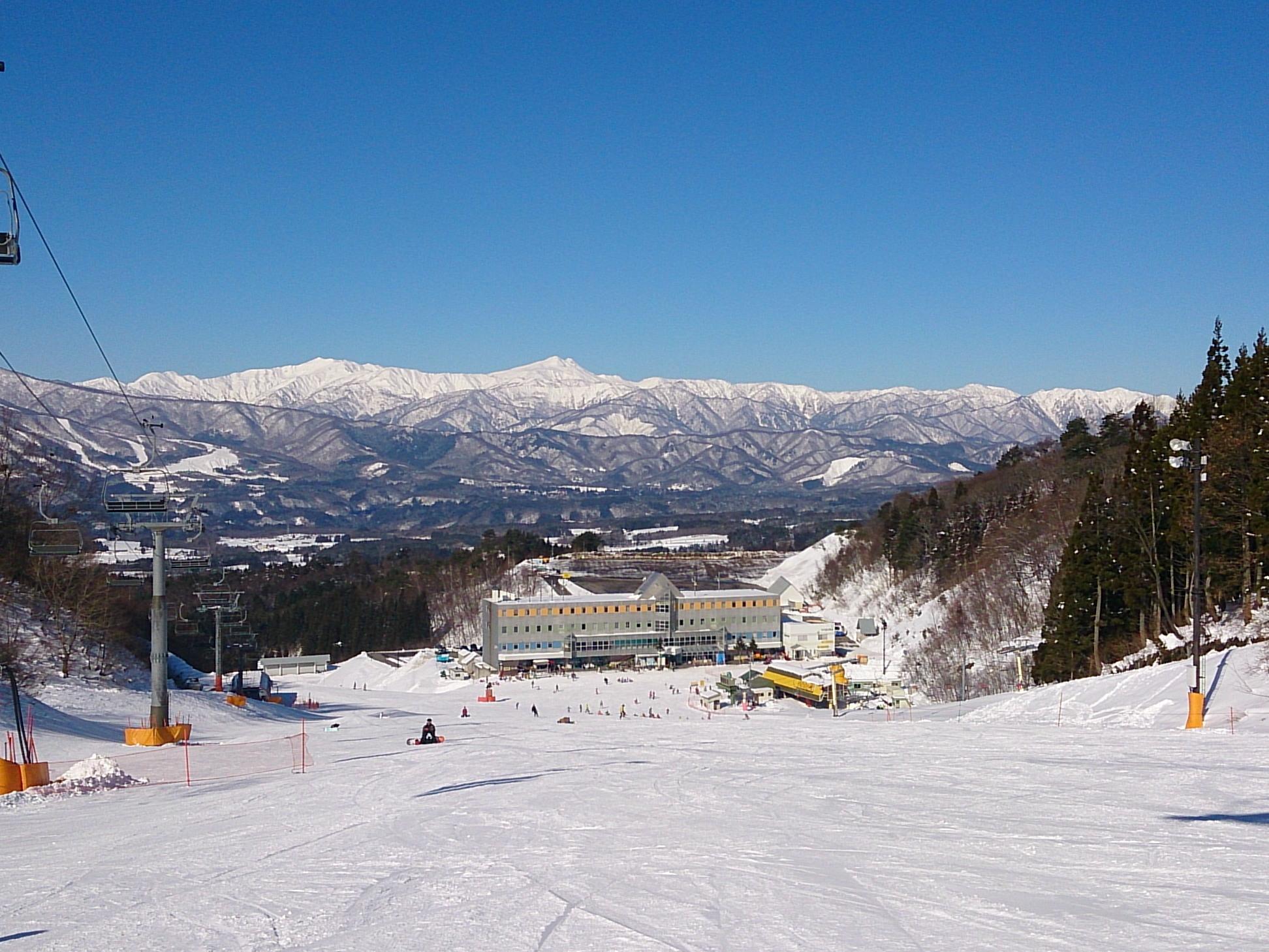 Whitepia Takasu