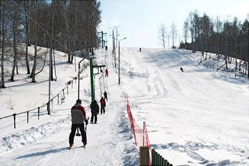 Park Koltsovo