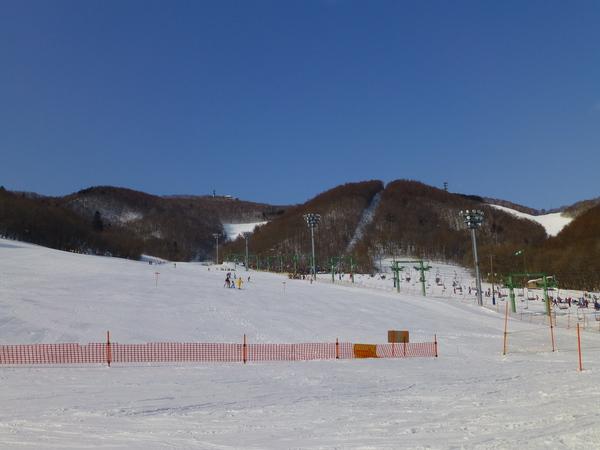 Sapporo Mt. Moiwa Ski Resort