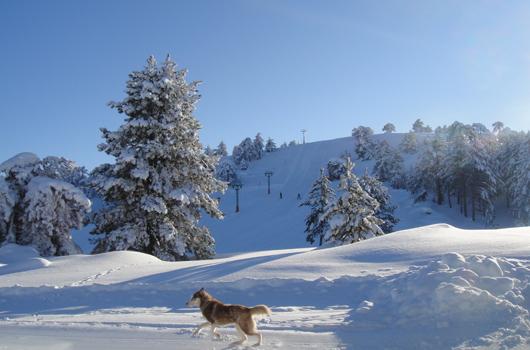 Burdur - Salda Kayak Merkezi