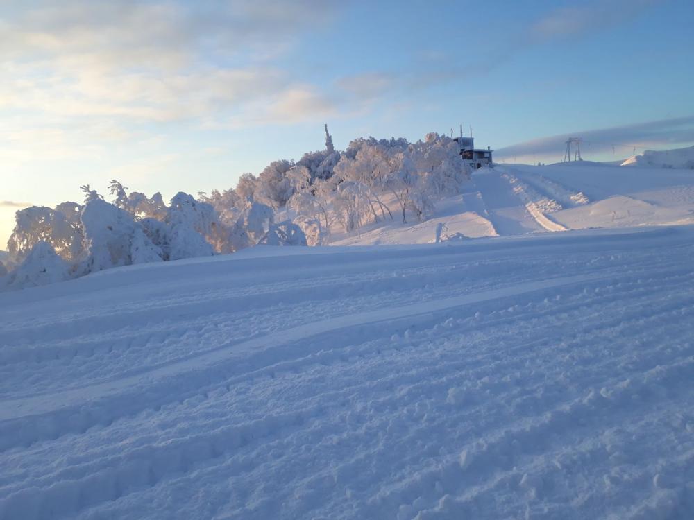 Sangiacomo Cardini Ski