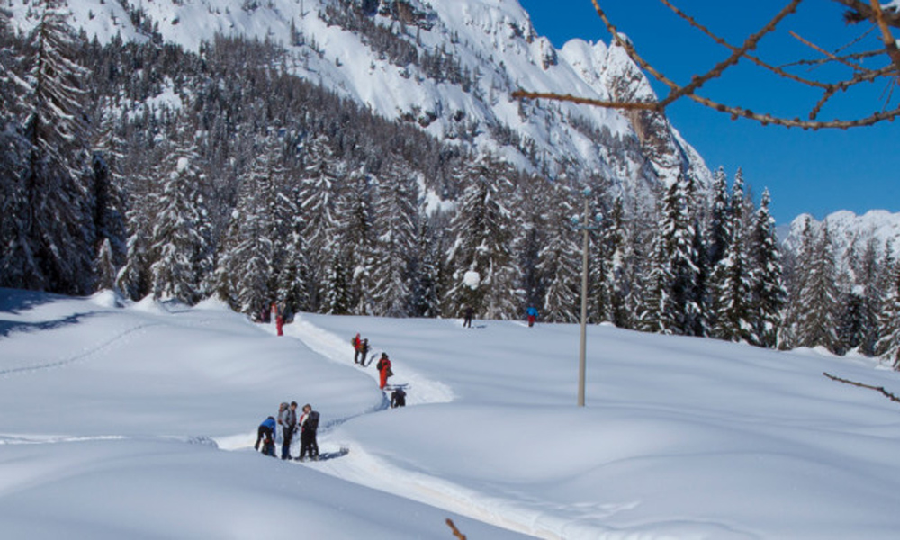 Auronzo - Cortina D'Ampezzo