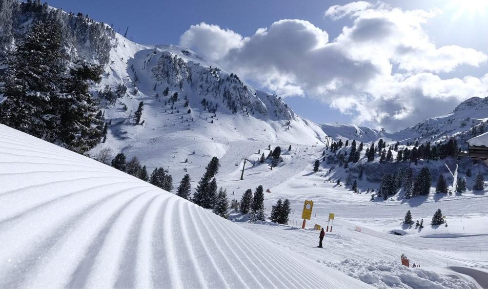 Pampeago - Ski Center Latemar - Val di Fiemme